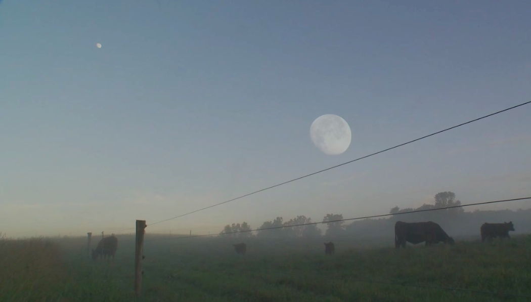 Moon over Fox Hollow-other angle